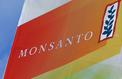 Glyphosate: un débat pollué par l'image de Monsanto