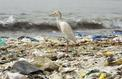 Veolia et Nestlé s'associent pour le recyclage des plastiques