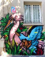 Les oiseaux colorés de Mateus Bailon.