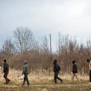 Immigration : plus de 25.000 interpellations à la frontière serbo-hongroise