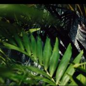 Jurassic World :pour l'I-Rex le temps du carnage est venu