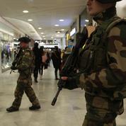 Face au terrorisme, les effectifs de l'armée en question