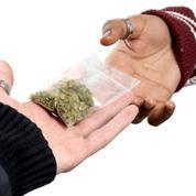 8% des ados en danger face au cannabis