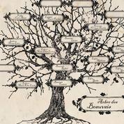 Généalogie : partir mieux armé à la recherche de ses ancêtres