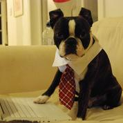 Les raisons qui font de vous un «workaholic»...