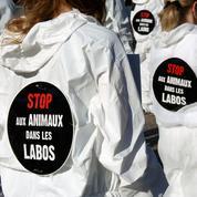 L'Europe reçoit une pétition contre l'expérimentation animale