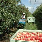 La FNSEA défend 18 propositions pour booster l'emploi agricole
