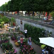 «Jardins, jardin» aux Tuileries : sur les pavés, le bonheur