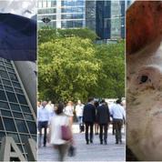 Grèce, économie française, filière porcine : le récap éco du jour