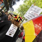 L'appel de l'Académie de Berlin pour sauvegarder l'enseignement de l'allemand