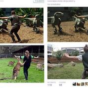Jurassic World parodié par le personnel des zoos