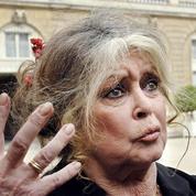 Brigitte Bardot écrit une lettre antifourrure à la chatte de Lagerfeld