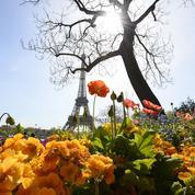 Paris lance un permis pour pouvoir jardiner dans les rues de la capitale