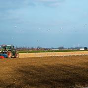 Combien gagnent réellement les agriculteurs français?