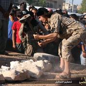 Daech massacre le Lion d'Athéna à Palmyre