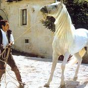 Omar Sharif : «Le cheval, c'est mon dada»
