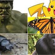 Gorille de Rostock, Pikachu, Hulk : les surnoms des coureurs du peloton