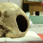 Un crâne du Musée de l'Homme réclamé par la Patagonie