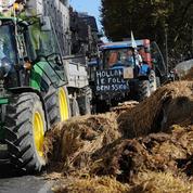 Crise des éleveurs : les agriculteurs maintiennent la pression