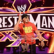 Le catcheur américain Hulk Hogan exclu pour propos racistes