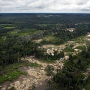 L'Amazonie grignotée par la ruée vers l'or clandestine