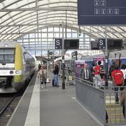 Libéralisation des autocars : les lignes de TER de moins de 100km passées au crible