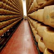 Ces 450.000 meules de parmesan qui valent de l'or