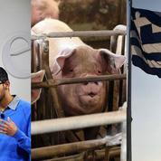 Google, porc, Grèce : le récap éco du jour
