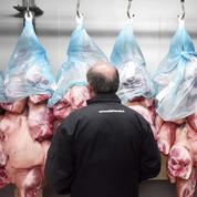 Deux importants industriels de la viande boycottent le porc français