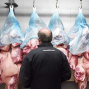 Le Marché du porc breton ne réunit que 13 acheteurs