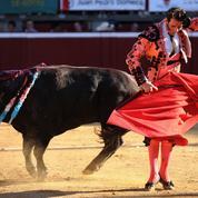 En Espagne, la gauche radicale veut mettre à mort les corridas