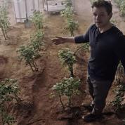 Seul sur Mars :Matt Damon en agriculteur de l'espace