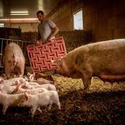 La FNSEA réclame 3 milliards d'euros pour sauver l'agriculture française