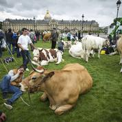 Mobilisation des éleveurs le 3 septembre à Paris