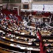 Une députée cède son siège à sa belle-fille grâce à une mission gouvernementale