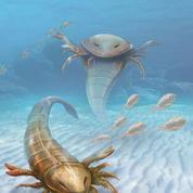 Découverte d'un scorpion préhistorique géant, terreur des mers