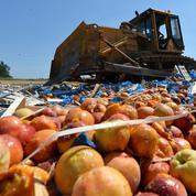 Combien l'embargo russe coûte-t-il à l'agriculture française?