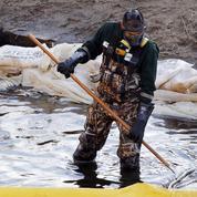 Très profitables et impunis, les crimes environnementaux se multiplient