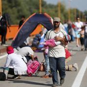 Migrants: chaos et improvisation à la frontière serbo-croate