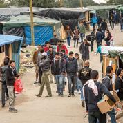 Migrants: les camps du Calaisis sous le joug des gangs criminels