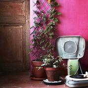 Un nouveau service de livraison et soins de plantes à domicile