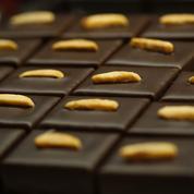 Salon du chocolat 2015 : 5 raisons d'y aller