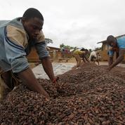 «Le consommateur doit s'attendre à payer son chocolat plus cher»