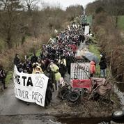 Notre-Dame-des-Landes: les écologistes en appellent à Hollande