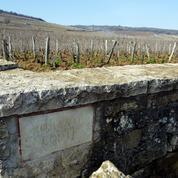Dégustation du Romanée-Conti millésime 2014: le chant des vignes