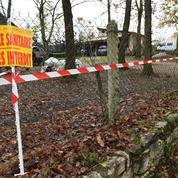 Grippe aviaire en Dordogne: les spécialistes s'interrogent sur le type de virus