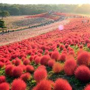 5 sites aux couleurs de l'automne