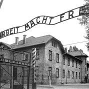 Auschwitz : un ex-infirmier de 95 ans jugé apte à comparaître
