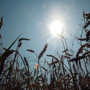 Risques climatiques: les assureurs craignent un doublement de leur facture