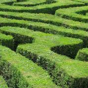 Comment créer un labyrinthe végétal?